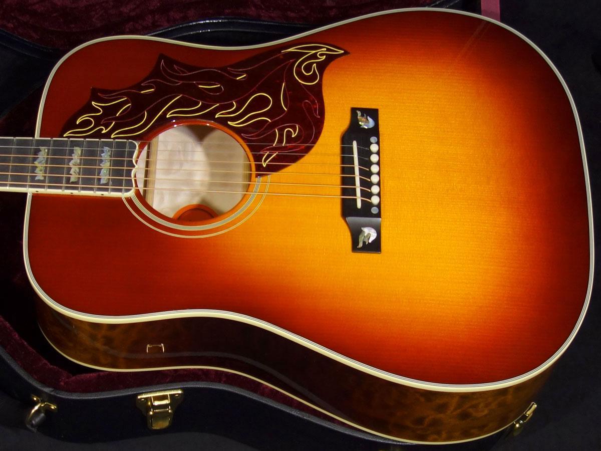 Musical Instruments & Gear Gibson Limited Edition Wild Firebird Autumn Burst Guitars & Basses